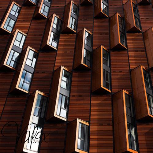 חלונות מעץ אלון מודרני