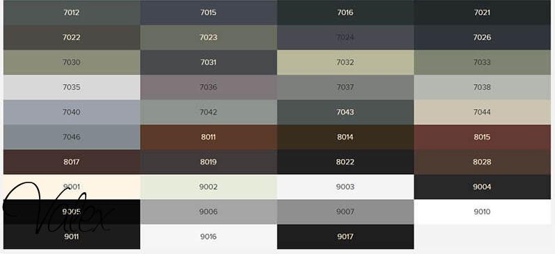 צבע ראל לחלונות בלגיים ברזל