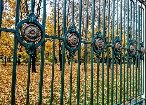 גדר דקורטיבי לחצר